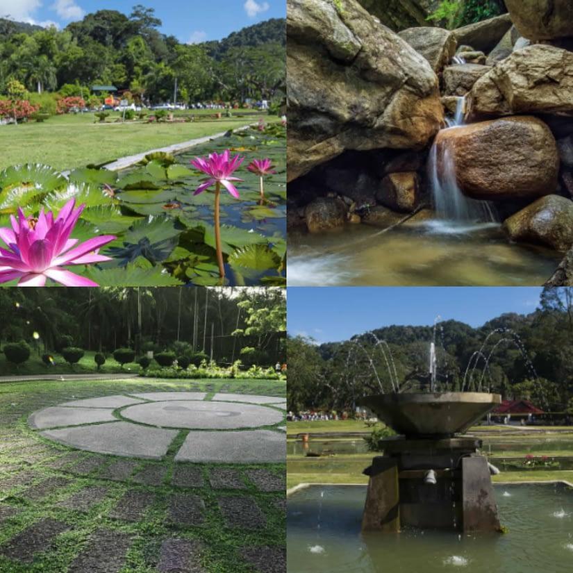 Taman Botani Pulau Pinang